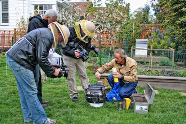 Backyard Beekeeping - Growing A Greener World