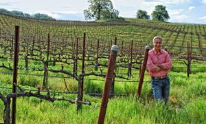The Earth-friendly Vineyard: We can all toast to that!