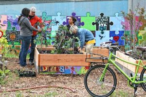 Urban Tilth provides a valuable educational resource to the Richmond, CA community