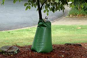 This water filled bag by Treegator is one type of drip irrigation