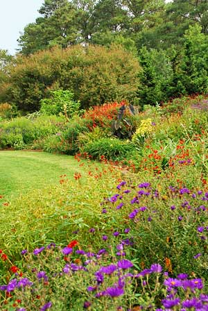 Fall is the Best Time to Garden - Growing A Greener World®