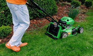 Grasscycling; Going Bag less- Its Liberating for You and the Environment