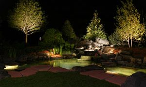 Enjoy your Garden After Dark, Not in the Dark
