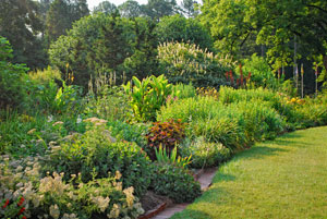 Perennials In The Landscape Growing A Greener World