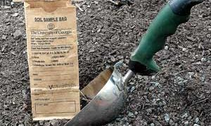 Soil Test – Your First Step to Lawn and Garden Success
