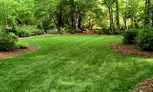 Turf Tips for Spring and Summer