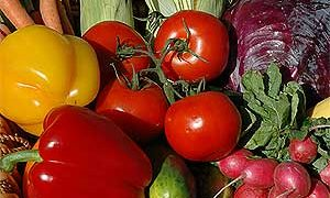 Vegetable Gardening Overview