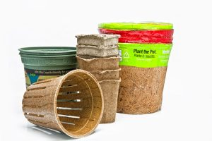 Compostable and biodegradable pots