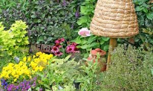 Using Focal Points to Make a Good Garden Great