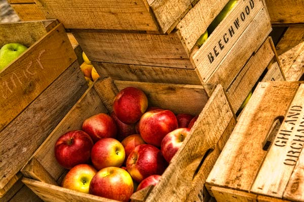 Apples in crates growing a greener world for How to make apple crates