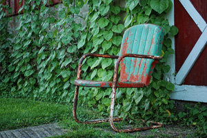 Chair among morning glories
