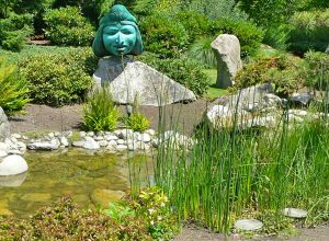 The beautifully designed pond at the Willows Lodge doubles as a rain garden