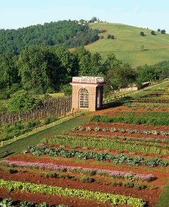 Jefferson's kitchen garden on the slope of Monticello Mountain
