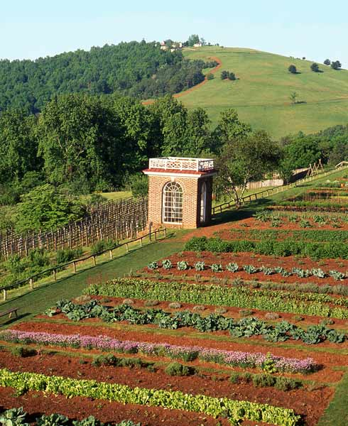 Jefferson S Kitchen Garden On The Slope Of Monticello Mountain