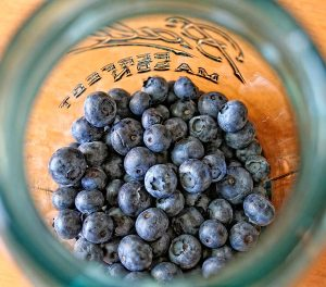 Fresh blueberries in a vintage jar waiting to become liqueur
