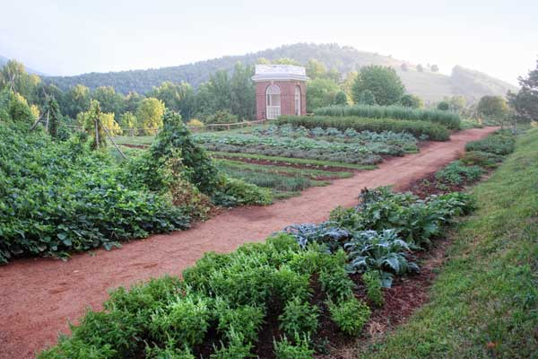Garden At Monticello