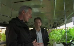 Talking with Matt Liotta at PodPonics about how he came to be a hydroponic urban farmer