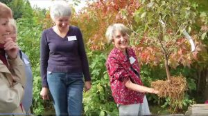 Linda Chalker-Scott Dispels Garden Myths