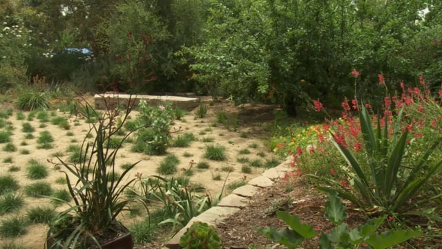 Episode 208: Waterwise Gardening And Landscaping   Growing A Greener World®