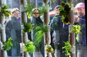Passersby stop to admire and discuss the Windowfarm™ system in the store window