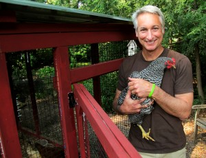 Joe Lamp'l with a chicken friend