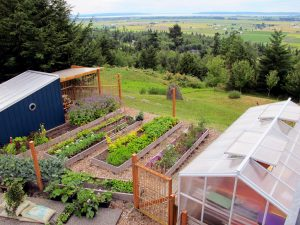 Graham and Treena Kerr's kitchen garden