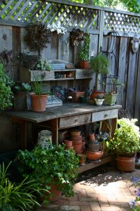 A small space can come to life with the right mix of heights, fun objects, and fine-foliage plants