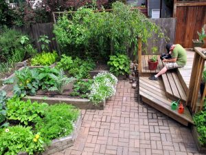 Almost any yard space can be used beautifully for local food production