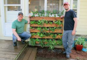 Monty and Kai with their new pallet vertical garden! It's all greens, vegetables, and herbs