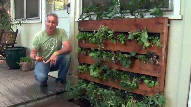 Creating a pallet garden step by step instructions for Pallet veggie garden