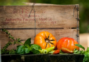 By carefully growing and saving heirloom seeds we can preserve these varieties for future use