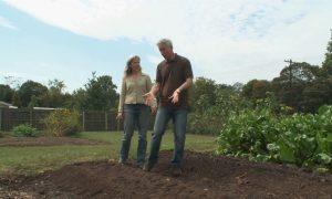 Episode 225: Backyard Composting