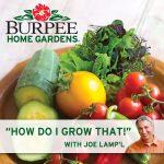 How do I Grow That?!? with Joe Lamp'l