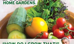 Our New Podcast Series: How do I Grow THAT?
