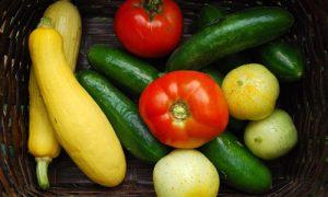 The $25 Organic Victory Garden Challenge Redux