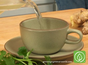 Ginger Mint Lemongrass Tea with Chef Nathan Lyon