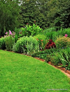 Sustainable organic lawns