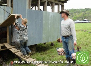 Collecting Farm Fresh Eggs at Polyface Farms