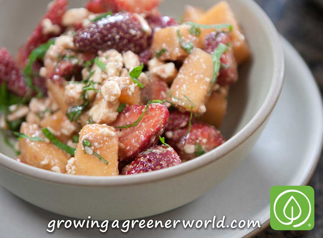 Easy Summer Cantaloupe Strawberry Salad with Chef Nathan Lyon from ...