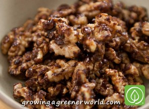 OMG YUM Sweet and Spicy Maple Candied Walnuts
