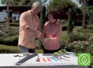 Joe Lamp'l talks garden tools with Dr. Amy Wagenfeld, Occupational Therapist