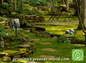 Moss Can Play Many Roles In The Garden, From Feature To Filler To Lawn.
