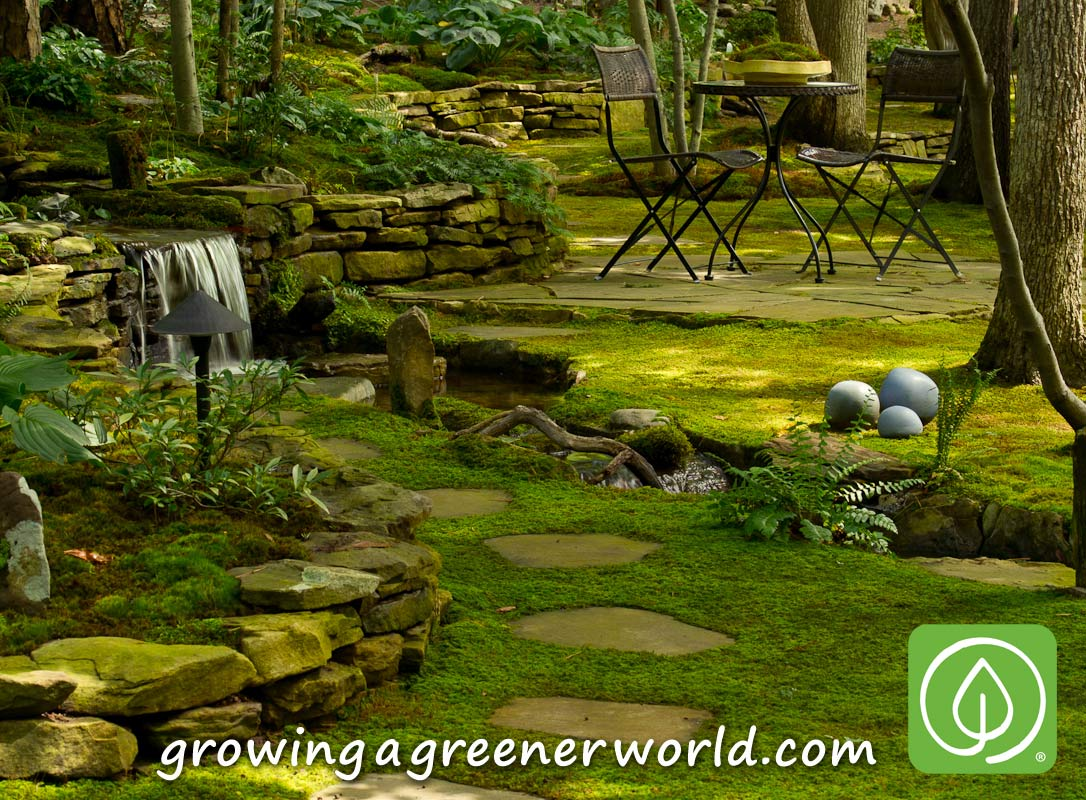 a greener earth Growing a greener world is an award-winning tv show appearing on national public television that features organic gardening, green living and farm-to-table cooking each episode focuses on compelling and inspirational people making a positive impact on the planet through gardening and shares diy information that we can all use at home.
