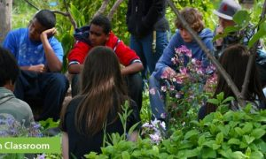 Episode 324: Edible Schoolyard and Kitchen Classroom