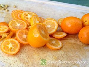Slicing kumquats is time consuming but SO worth it.