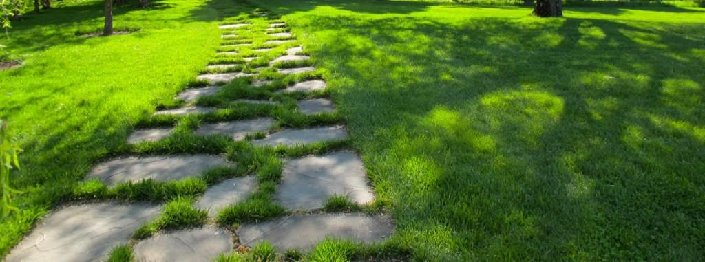 Organic-Lawn-Care-Web2