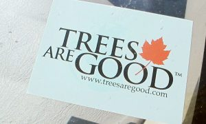 Trees are Good: In Defense of Trees – Again