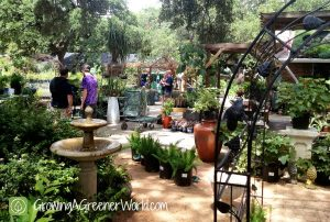 The Great Outdoors is a top Independent Garden Center
