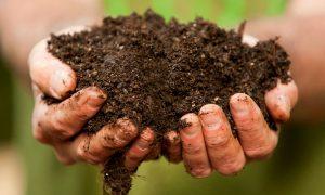 Building a Pallet Compost Bin