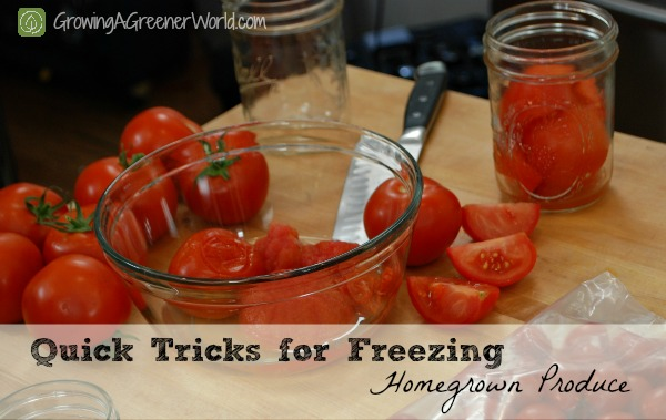 Freezing Veggies & Fruits quickly - Growing A Greener World